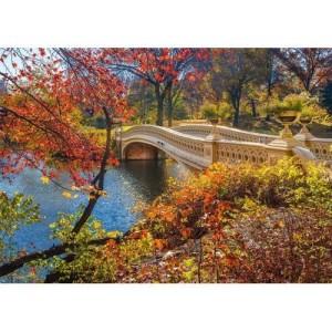 Puzzle 1000 Puente de Central Park, Nueva York