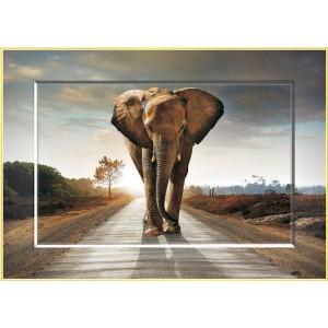 Puzzle 1000 Elefante Deco-Art